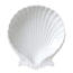 Vertex Shell Dish, 153mm